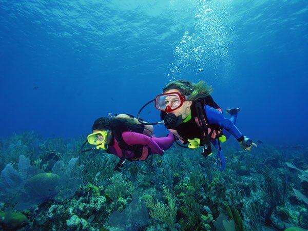 Plongée sous marine à Budva près des appartements à louer Rino & Mimi